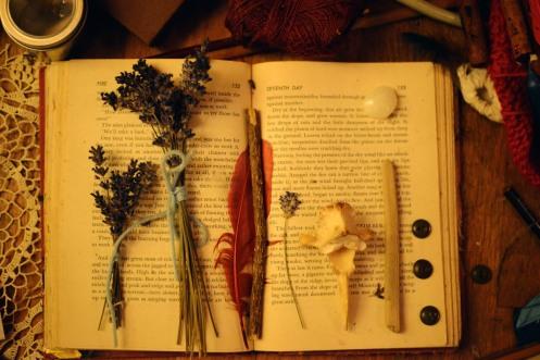 lavenderbonebook